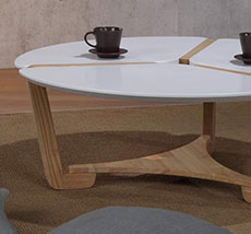 Coffee Table 003