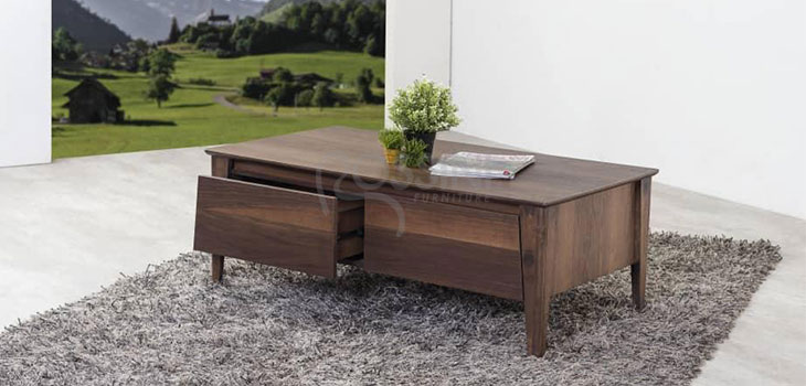 Coffee Table 022